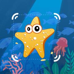 水下目标检测算法赛